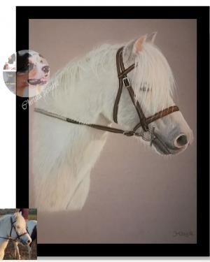 Cheval blanc 3