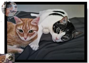 Deux chats4
