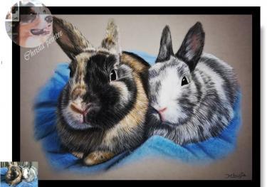 Deux lapins nain
