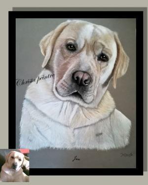 Labrador a