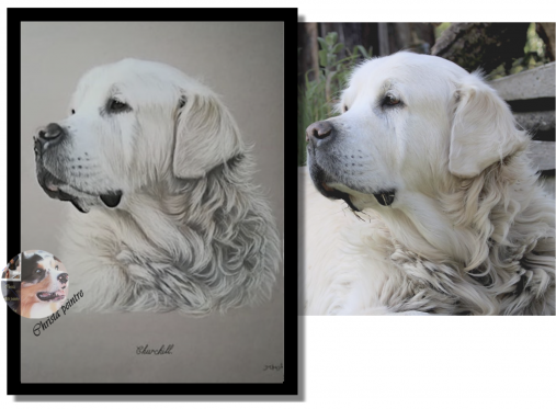 Labrador tableau de christa