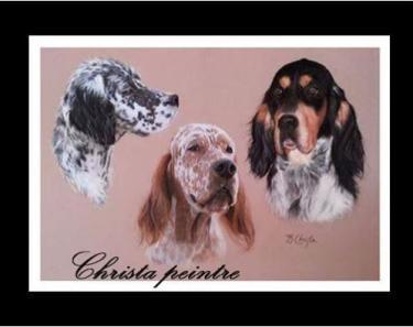 Portraits chien 6 1