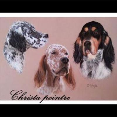 Portraits chien 6