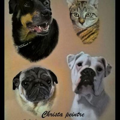 Portraits chien 9