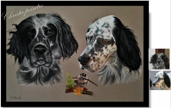 Setter pointer et becasse