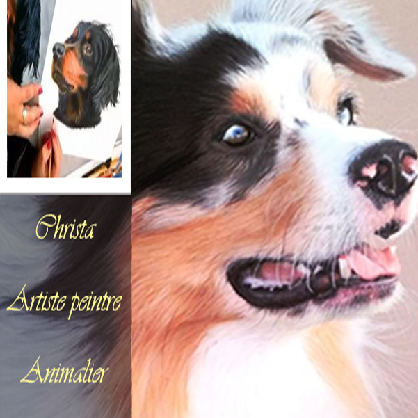 Christa: Artiste peintre  animalier